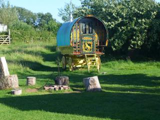 Gypsy Caravan Holiday Breaks, In Rural Somerset, Compton Dundon