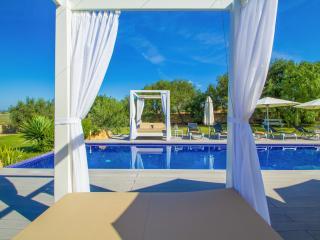 BAIX-PAULONIA - Villa for 16 people in Manacor