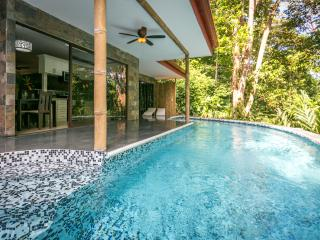 Exotic Casa Aracari, the perfect 2 BR jungle home!, Quepos