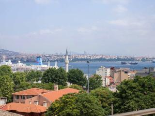 1 BED Penthouse with Sea and Tower View in Galata, Estambul