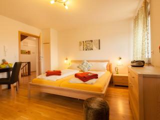 Guest Room in Aulendorf -  (# 9427)