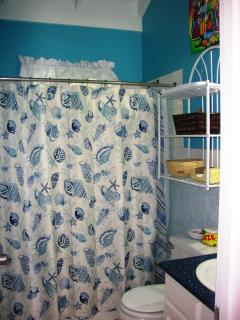Bathroom: another view. Blow dryer in condo.