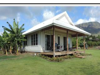 Maui life, Lahaina