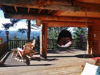 Hand-Designed 3+BR Evergreen Cabin on 3 Scenic Acres w/Private Hot Tub, Wifi & Phenomenal Views - Easy Access to Skiing, Red Rocks Amphitheater & More!