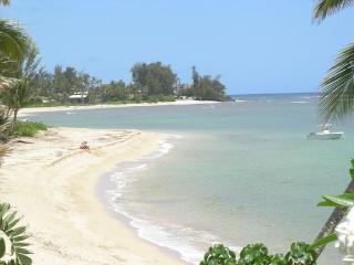Beach Front Home - 'Hale Le'a Le'a II'