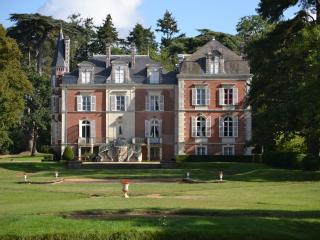 Loire Valley holiday chateau (pool, tennis, horse)