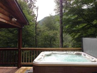 Woodland Gem--Private cabin-Hot Tub, Wifi, Jacuzzi, Snowshoe
