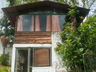 Casa Arbol Mirador