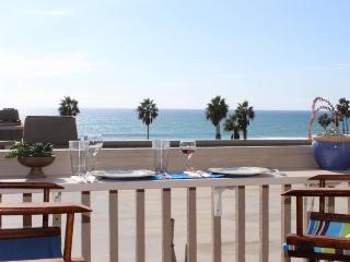 Ocean view, air conditioning and boogie boards, Oceanside