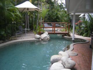 Free form Tropical Saltwater Pool