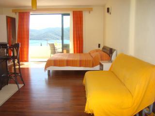 Apartments Dalmatin  -  WENGE, Viganj