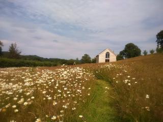 Wild Meadow Cottage, Presteigne