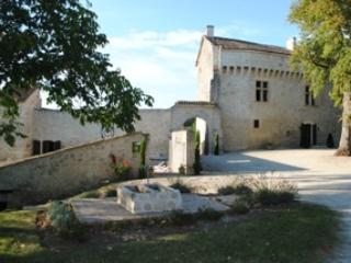 Château de Plèneselve - Gîte - Chambres d'hôtes, Bon-Encontre