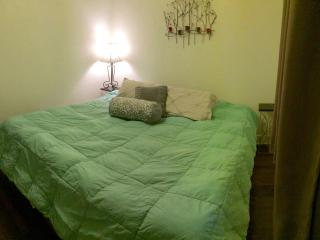 Cute and cozy carriage house! Ideal location!, Denver
