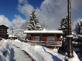 Le Grand Soleil,  near center and ski slopes, Courchevel