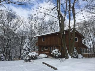 Gorgeous Private Cabin* Quiet winter retreat * 3 bedrooms 2 1/2 baths * sleeps 8