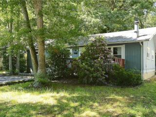 Lovely 3 bedroom home on a secluded, wooded lot., Bethany Beach