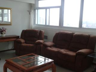 DOWNTOWN: Executive Furnished 2 bd great view, pkg