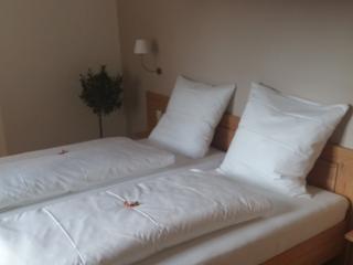 Guest Room in Muellheim - 151 sqft, Shower / WC (# 9437)