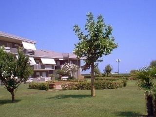 Green Marine, Palme, Ismare, Montesilvano