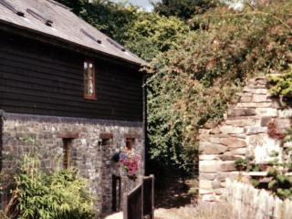 Brandy House Farm - Barn End, Knighton