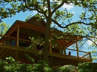 The Arrowhead Ridge Treehouse, Bull Shoals Lake