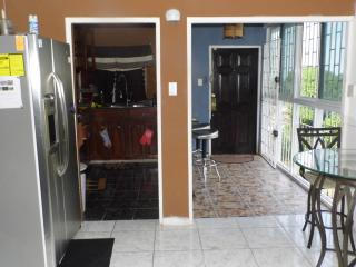 Smart Home in Montego Bay 6 Minutes away from Airport (2 Bedroom apt)