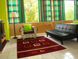 Luxurious New Kingston Captivating Apartment