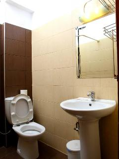Bathroom with shower in the ground floor apartment