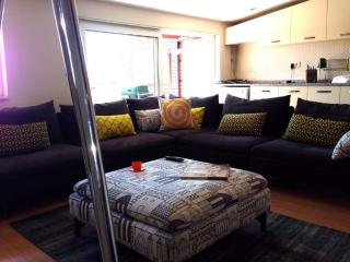 Stylish Terrace House with Bosphorus View 1397, Istanbul