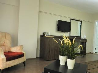 1 Bedroom Suite Apart with Kitchen in Istanbul1387, Estambul