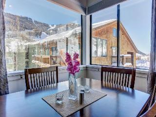 Sunny Mountain Views, Full Kitchen, Hot Tub, Walk to Festival Events & Trailhead