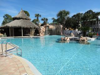 Poolside Purple Parrot/Check Out Our Low Rates!