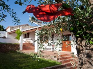 House in Alentejo with Swimming Pool, Mertola