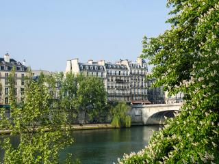 Apartment in the historic Les Marais, surrounded by art galleries, museums, shops and fine restaurants. YNF ART, Paris