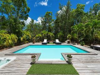 Perfect couple's hideaway with jacuzzi and private pool,, Terres Basses