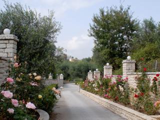 Epavlis Nantin Corfu, Corfu Town