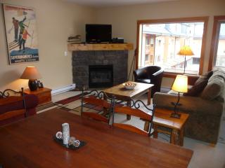 Beautiful,condo, 3 Bedrooms,2 bath.Great location, Canmore