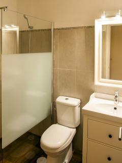 Cuarto de baño elegante para disfrutar de una buena ducha.