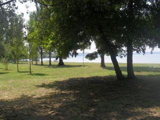 MONICA -- CASETTA DI  VACANZA nel verde del lago di Bracciano, Trevignano Romano