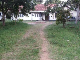 Sinha Sevana, Negombo
