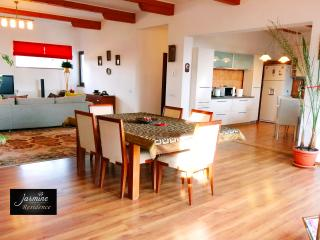 65 sqm sunny Living Room & Open space Kitchen - spacious lounge area large screen LCD & Surround sou