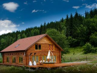 Magical log cabin in Dracula land!