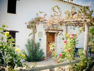 Casa Rural en pleno Parque de Grazalema, El Bosque