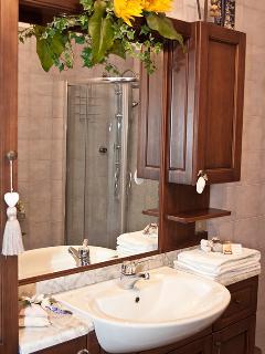 Il nostro bagno con doccia è grandissimo!