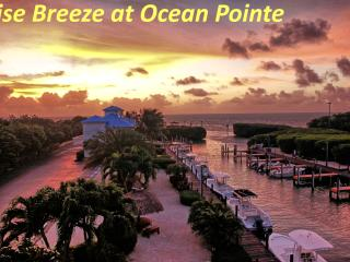 Sunrise Breeze-Ocean Pointe-Awesome Ocean View 4 U, Tavernier