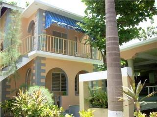 2 bedroom apartment, 1 min walk from beach (T), Negril