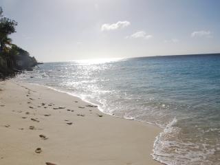 BEACH APARTMENT nr 1, Bellevue Bonaire  ALL INCLUSIVE