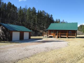 Newton Creek Cabin, Hill City