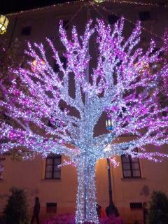 OS Garden - Maison de Charme - Luci d'artista a Natale